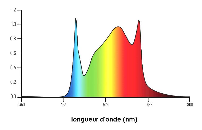spectre-ok-465.jpg