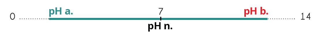 ph-metre2.jpg