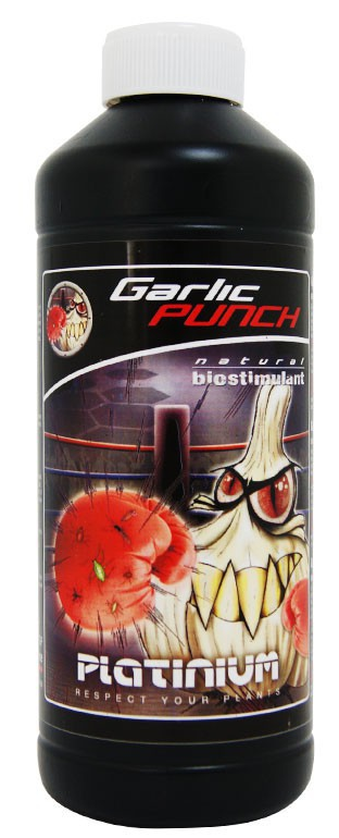 garlic punch