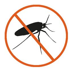 mouches terreaux