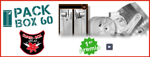 pack chambres 60
