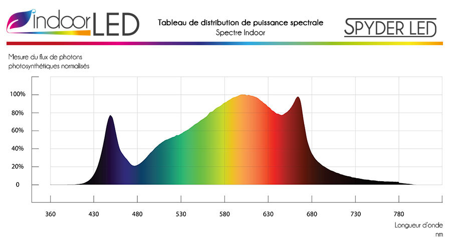 spectra-tarantula-refait-indoorled_1.jpg