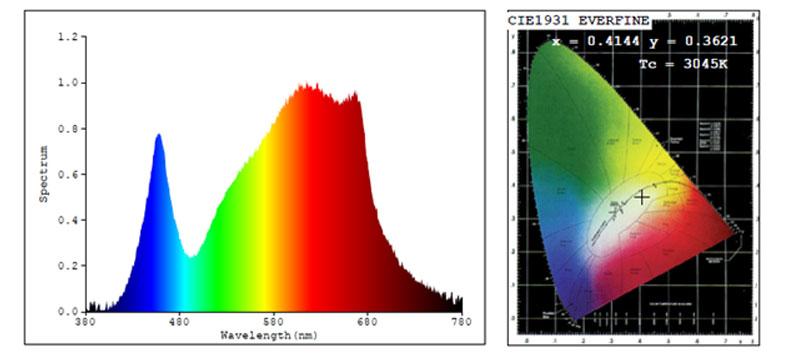 spectra-tarantula500.jpg