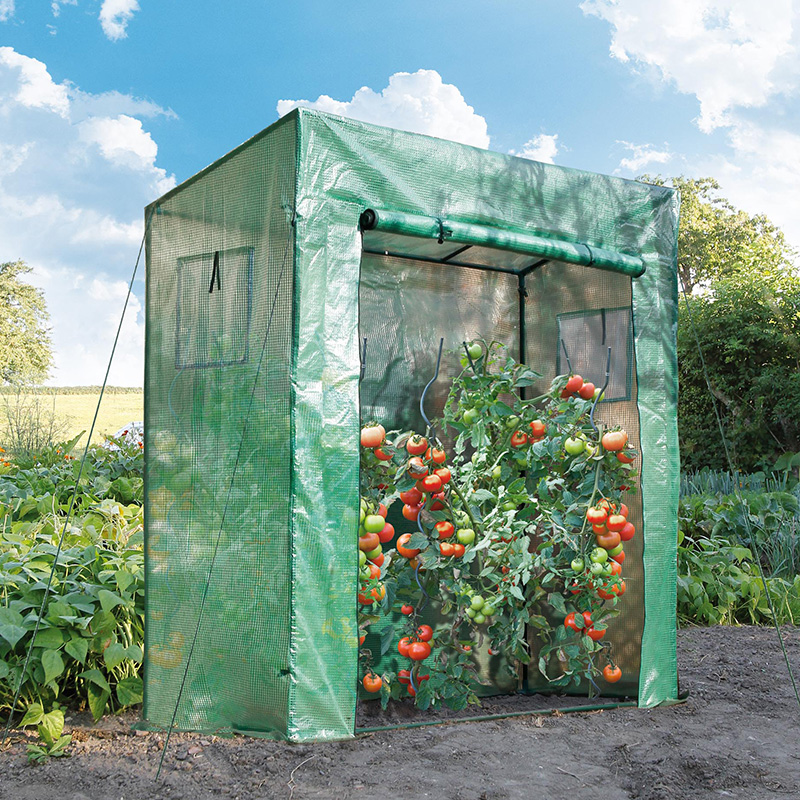 Serre De Jardin Avec Liens Et Crochets De Fixation H200x198x78cm Cis