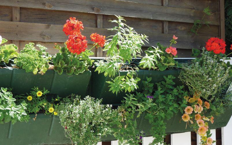 Modulo green jardini re verticale 90cmx24cm h gouttiere - Jardiniere verticale ...