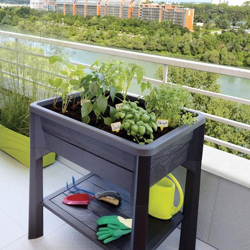 Eda espace potager vegetable city gris fonc 79x59x80cm for Ver gris potager